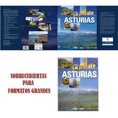 Artesania Asturiana - Libros formato grande - Editorial Picu Urriellu