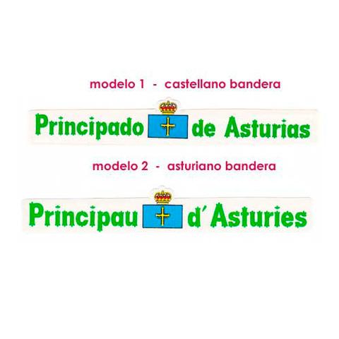 Artesania Asturiana - Pegatina Letras principado de Asturias - bandera  - Editorial Picu Urriellu