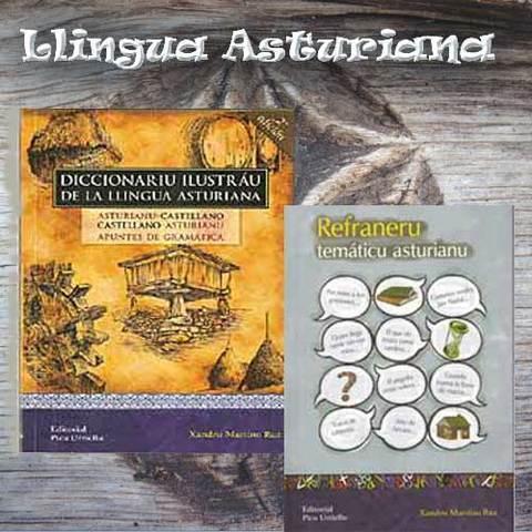 Artesania Asturiana - Libros de Llingua asturiana - Editorial Picu Urriellu
