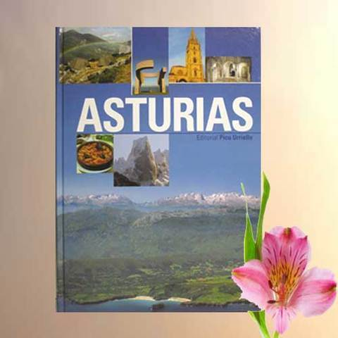 Artesania Asturiana - Asturias formato grande en español - Editorial Picu Urriellu