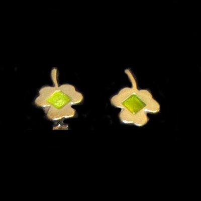 Pendientes plata esmaltes presion  - motivos manzana y flor