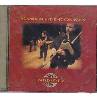 Asturiana Mining Company - patrimoniu