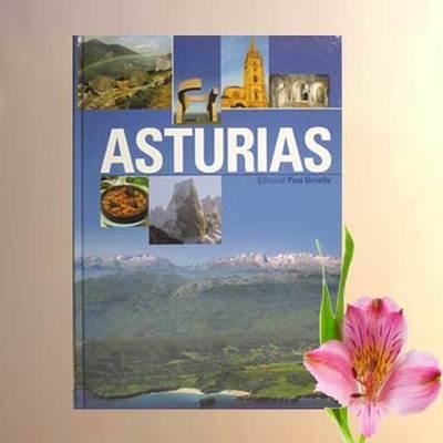 Asturias formato grande en español