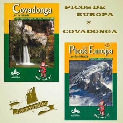 Libros de Picos de Europa y Covadonga