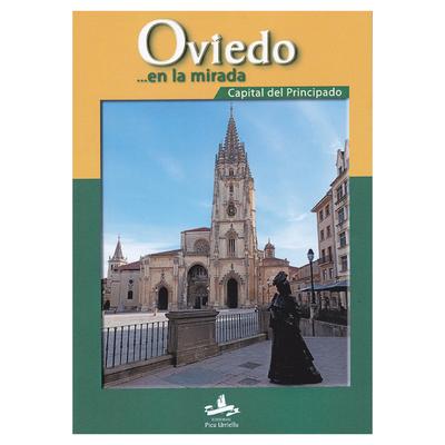 Oviedo en la mirada