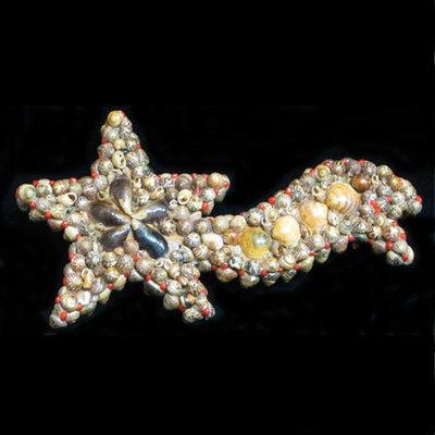 Estrella de conchas