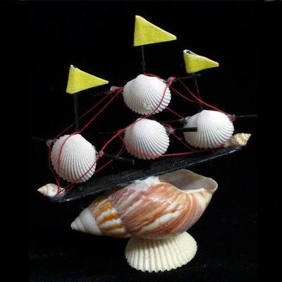Barco conchas pequeño